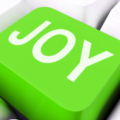 Joy Keys Mean Enjoy Or Happy.