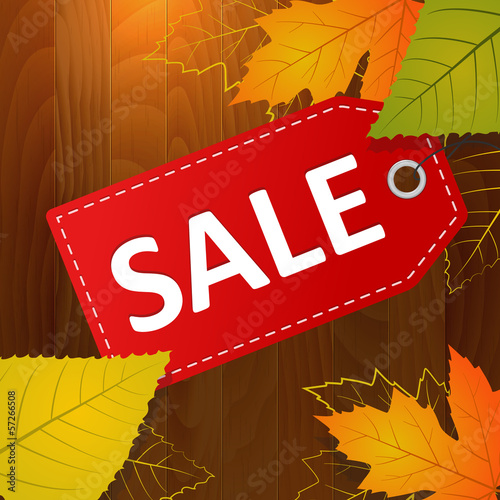 autumn sale vector label on wood background