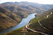 Douro Valley - 57268163