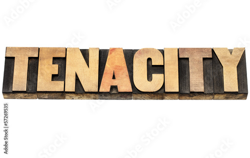 tenacity word in wood type