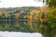 Jesień na drzewach