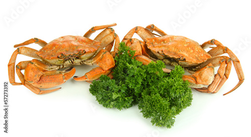 Boiled crabs isolated on white