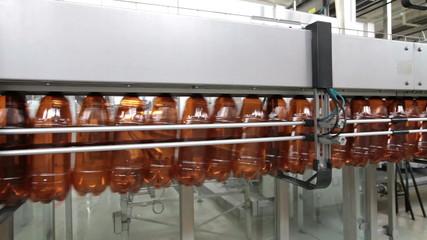 The food industry. Plastic beer bottles moving on conveyor