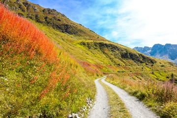 Strada sterrata di montagna in autunno