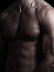 muscle shape