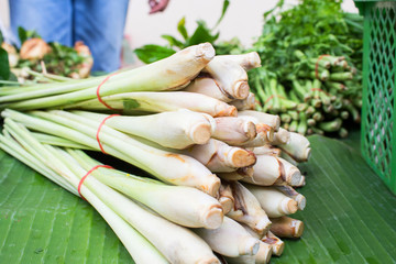 bundle of lemon grass