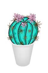 Cactus Plant and Pink Flower in A Flowerpot
