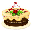 A delicious cake for Christmas