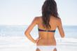 Back of attractive tanned woman in bikini
