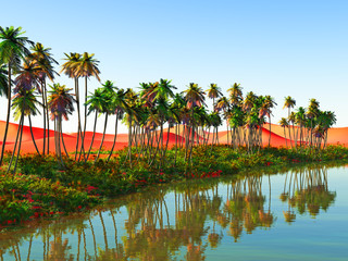 Beautiful natural background -African oasis