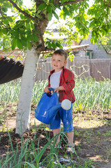 Cute little boy helping in the vegetable garden