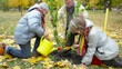 Senior man and his grandchildren planting tree in the garden