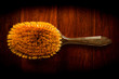 Hairbrush on wood