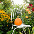 Stuhl mit Hokkaidokürbis im Herbstgarten