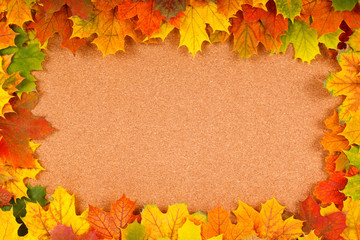 Fall border on corkboard