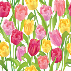 Flower tulips seamless background. Floral spring pattern.