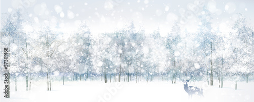 Vector of winter scene with deer on forest background.