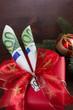Weihnachtsschleife mit Euro Geldscheinen