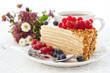 Piece of homemade honey cake with fresh berries