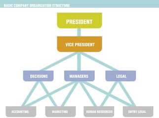 Basic Company Organization Structure Chart