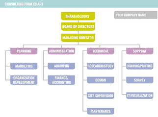 Organization Chart: consulting firm