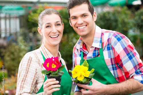 Blumenzucht - Gärtner in ihrer Großgärtnerei