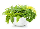 Fresh herbs in bowl