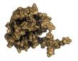 Prostate-specific antigen (PSA, gamma-seminoprotein)
