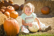 Adorable Baby Girl Holding a Pumpkin at the Pumpkin Patch.