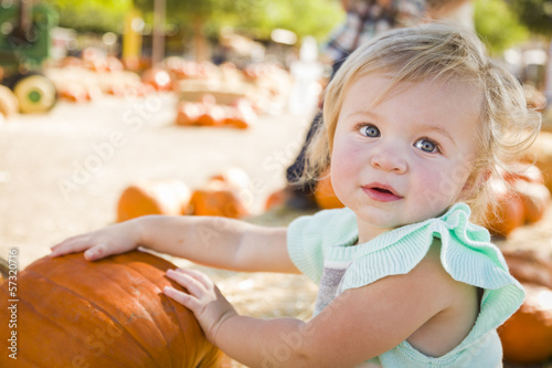 Adorable Baby Girl Having Fun at the Pumpkin Patch.