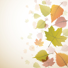 Vector autumnal background