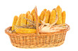 Harvested corn in a basket