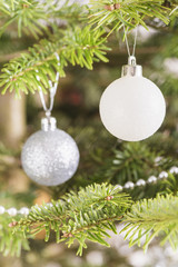 Baubles hanging in christmas tree