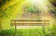 canvas print picture - Bank im Sonnenschein am See