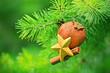 Leinwandbild Motiv Christmas decoration - New Year decoration