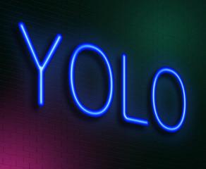 YOLO concept.