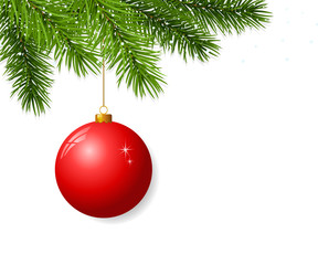 Branch with hanging christmas ball
