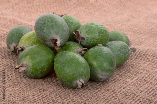 Feijoa on a substrate sacking.