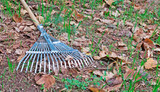 rake on grass and leaves