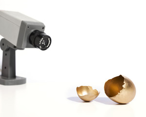 Golden Egg Security