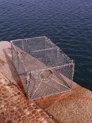 trappola per pesci 1