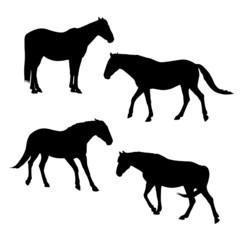 horses silhouettes set 4