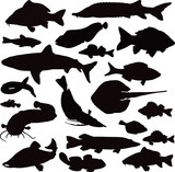 20 black icons of images of fishes