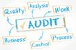 whiteboard schema : audit control