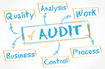 whiteboard schema : audit control