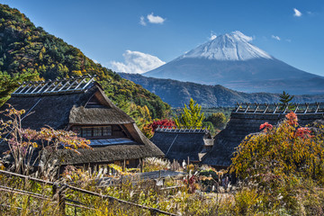 Mt Fuji and Iyashinosato Village