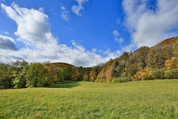 Wienerwald im Herbst