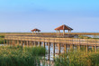 Wooden Bridge in lotus lake at khao samroiyod national park, tha