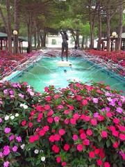 Blühender Springbrunnen