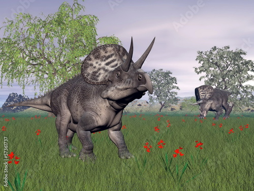 Zuniceratops dinosaurs in nature - 3D render